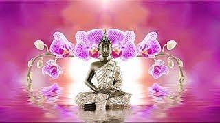 Nhạc Thiền Phật 2019 - Thanh Tịnh An Lạc Mỗi Ngày - Nhạc Thiền Tịnh Tâm 2019