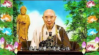 Kinh Đại Phương Quảng Phật Hoa Nghiêm, tập 0035