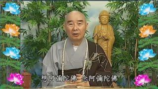 Kinh Đại Phương Quảng Phật Hoa Nghiêm, tập 0142