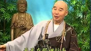 Tập 150 - (HQ) Kinh Đại Thừa Vô Lượng Thọ - Pháp sư Tịnh Không chủ giảng -  cẩn dịch cư sĩ Vọng Tây