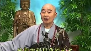 Tập 162 - (HQ) Kinh Đại Thừa Vô Lượng Thọ - Pháp sư Tịnh Không chủ giảng - cẩn dịch cư sĩ Vọng Tây