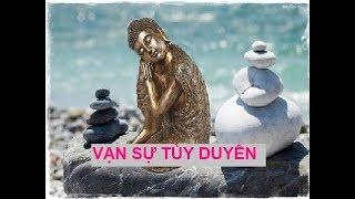 Thuận theo tự nhiên có phải là phúc báo? - Lời dạy của Phật - Vạn sự tùy duyên