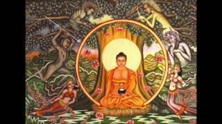 Niệm Phật đạt bất niệm tự niệm bảo đảm vãng sanh
