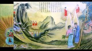 Kinh Vô Lượng Thọ (Tụng) - Thầy Thích Trí Thoát
