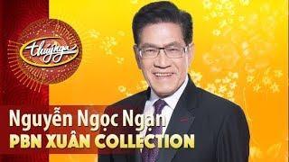 PBN 76 | Nhà Văn Nguyễn Ngọc Ngạn Nói Về Phong Tục Ngày Tết