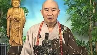 Tập 073 - Kinh Đại Thừa Vô Lượng Thọ - Pháp sư Tịnh Không chủ giảng -  cẩn dịch cư sĩ Vọng Tây