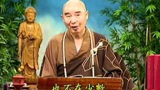 Kinh Vô Lượng Thọ tập 30.mpg - Pháp Sư Tịnh Không