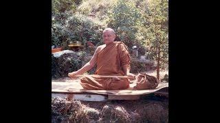 Pháp Luyện Tâm - Thiền Sư Ajahn Chah