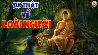 4 Sự Thật Của LOÀI NGƯỜI khiến chúng ta không khỏi CHẠNH LÒNG | Nhân Quả Luân Hồi