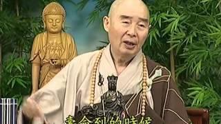 Tập 085 - (HQ) Kinh Đại Thừa Vô Lượng Thọ - Pháp sư Tịnh Không chủ giảng -  cẩn dịch cư sĩ Vọng Tây