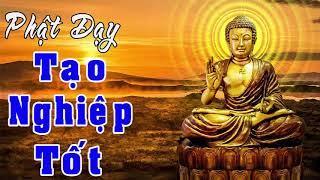 Vào Dịp tết Thanh Minh 2018 Hãy Nghe Lời Phật Dạy để Tâm Ý Thanh Tịnh Mọi Việc đều thông suốt