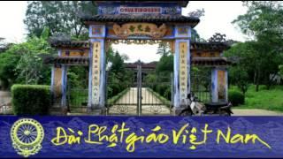 [Đài Phật giáo Việt Nam] Giáo hội Phật giáo Việt Nam Thống nhất đi về đâu ?