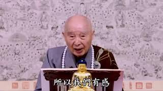 Phật hy vọng chúng ta, Tổ sư hy vọng chúng ta, không được quên mất câu Phật hiệu này.