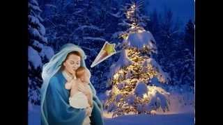 Niềm Vui Giáng Sinh - Lm Mi Trầm -Diệu Hiền -DuyHan