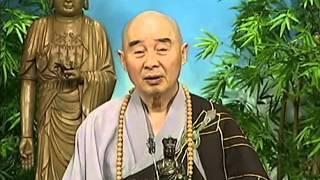 Tập 113 - (HQ) Kinh Đại Thừa Vô Lượng Thọ - Pháp sư Tịnh Không chủ giảng -  cẩn dịch cư sĩ Vọng Tây