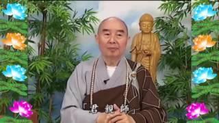 Kinh Đại Phương Quảng Phật Hoa Nghiêm, tập 0301