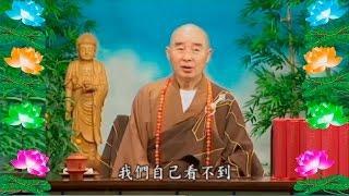 Kinh Đại Phương Quảng Phật Hoa Nghiêm,  tập 0021