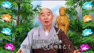 Kinh Đại Phương Quảng Phật Hoa Nghiêm, tập 0252
