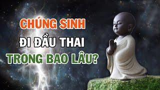 CHÚNG SINH Đầu Thai Chuyển Kiếp trong bao lâu? | Nghe để để thêm hiểu biết