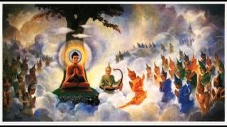 Tụng Kinh Phật Đảnh Tôn Thắng - Thầy Thích Huệ Duyên
