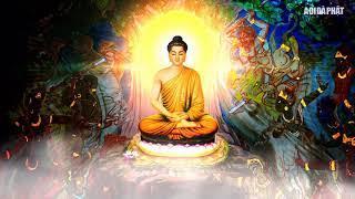 Đáng Sợ Trước Quả Báo Sát Sanh, Lời Phật dậy Chuyện có thật  Nhân Quả Báo ứng Không sai một ly