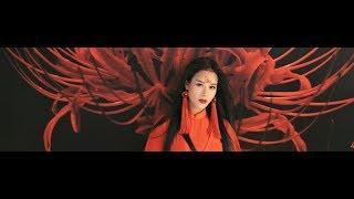 """HOA TRẦN- BỈ NGẠN ĐỎ cover nhạc phim """"Tam sinh tam thế"""""""