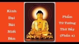 KINH ĐẠI BÁT NIẾT BÀN - PHẨM TỨ TƯỚNG THỨ 7 a
