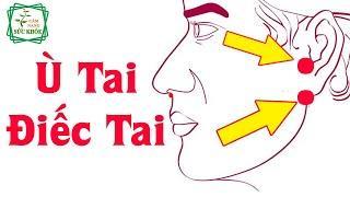 Cách chữa Ù Tai Điếc Tai cực hiệu quả của Lương Y Huỳnh Văn Phích