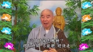 Kinh Đại Phương Quảng Phật Hoa Nghiêm, tập 0279
