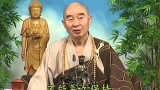 Tập 042 - (HQ) Kinh Đại Thừa Vô Lượng Thọ - Pháp sư Tịnh Không chủ giảng -  cẩn dịch cư sĩ Vọng Tây