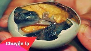 Chuyện lạ Việt Nam - Những món ăn kinh dị nhất thế giới