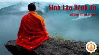 Sinh Lão Bệnh Tử - Những Lời Phật Dạy - New