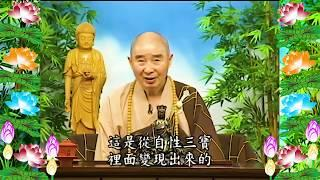 Kinh Đại Phương Quảng Phật Hoa Nghiêm, tập 0048