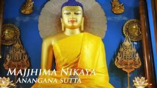 Đại Tạng Kinh Nikaya - Kinh Không Uế Nhiễm - Trung Bộ Kinh  - Chánh Phật Pháp Thực Tiễn