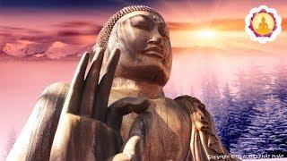 Nghe Giảng Kinh Phật Mỗi Đêm - Tâm Sáng Suốt Định Tĩnh - Ngủ Ngon May Mắn Bình An