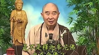 Tập 053 - Kinh Đại Thừa Vô Lượng Thọ - Pháp sư Tịnh Không chủ giảng -  cẩn dịch cư sĩ Vọng Tây