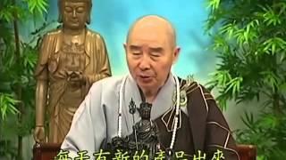 Tập 176 - (HQ) Kinh Đại Thừa Vô Lượng Thọ - Pháp sư Tịnh Không chủ giảng - cẩn dịch cư sĩ Vọng Tây