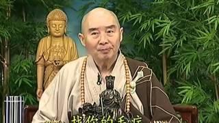 Tập 086 - (HQ) Kinh Đại Thừa Vô Lượng Thọ - Pháp sư Tịnh Không chủ giảng -  cẩn dịch cư sĩ Vọng Tây