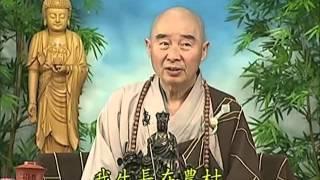 Tập 062 - (HQ) Kinh Đại Thừa Vô Lượng Thọ - Pháp sư Tịnh Không chủ giảng -  cẩn dịch cư sĩ Vọng Tây