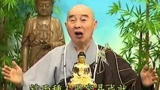 Tập 181 - (HQ) Kinh Đại Thừa Vô Lượng Thọ - Pháp sư Tịnh Không chủ giảng - cẩn dịch cư sĩ Vọng Tây