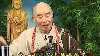 Tập 083 - (HQ) Kinh Đại Thừa Vô Lượng Thọ - Pháp sư Tịnh Không chủ giảng -  cẩn dịch cư sĩ Vọng Tây