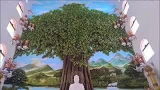 Hội Long Hoa  | A Di Đà Phật