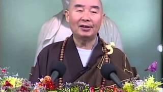 Tập 003 - (HQ) Kinh Đại Thừa Vô Lượng Thọ - Pháp sư Tịnh Không chủ giảng -  cẩn dịch cư sĩ Vọng Tây