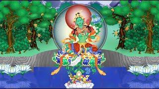 Thần Chú Lục Độ Phật Mẫu (Green Tara) - Thoát khỏi nạn tai, khổ đau !