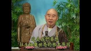 Tập 151 - (HQ) Kinh Đại Thừa Vô Lượng Thọ - Pháp sư Tịnh Không chủ giảng -  cẩn dịch cư sĩ Vọng Tây