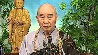 Tập 111 - (HQ) Kinh Đại Thừa Vô Lượng Thọ - Pháp sư Tịnh Không chủ giảng -  cẩn dịch cư sĩ Vọng Tây