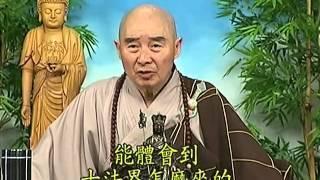 Tập 065 - (HQ) Kinh Đại Thừa Vô Lượng Thọ - Pháp sư Tịnh Không chủ giảng -  cẩn dịch cư sĩ Vọng Tây