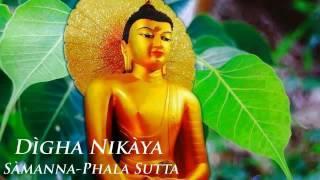 Đại Tạng Kinh Nikaya -  Kinh Sàmanna Phala - Trường Bộ Kinh - Chánh Phật Pháp Thực Tiễn