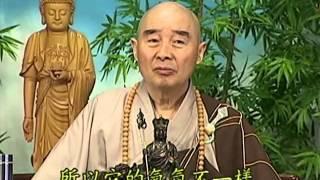 Tập 100 - (HQ) Kinh Đại Thừa Vô Lượng Thọ - Pháp sư Tịnh Không chủ giảng -  cẩn dịch cư sĩ Vọng Tây