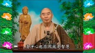 Kinh Đại Phương Quảng Phật Hoa Nghiêm,  tập 0047